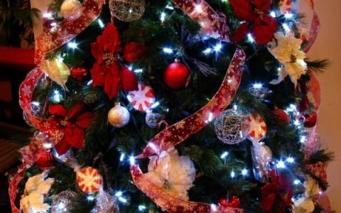 Рождественское собрание 24 декабря!
